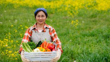 Farmer-vegetables-IDEAS