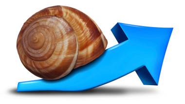 Snail-up-arrow-IDEAS