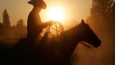 Cowboy-IDEAS